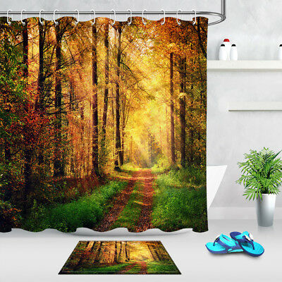 Old Tree Sunlight Treetop Branches Leaves Nature Picture Shower Curtain Set
