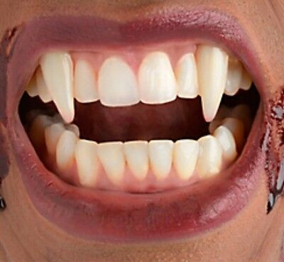 Vampire Fangs With Dental Appliance Putty Single Teeth