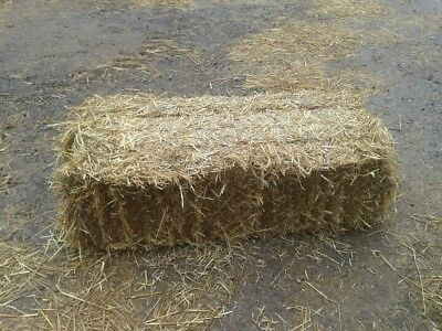 Wheat Straw Conventional Bales Harvested 2018