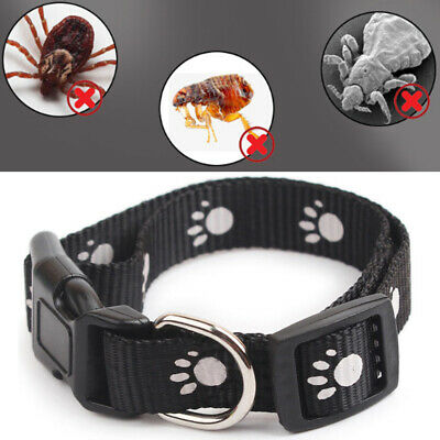 Adjustable Nylon Anti Flea Tick & Louse Pet Collar Cat Protection Neck Ring New
