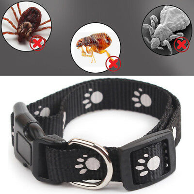 Pet Cat Strap Anti Flea & Tick Collar Protection Necklace Control Adjustable