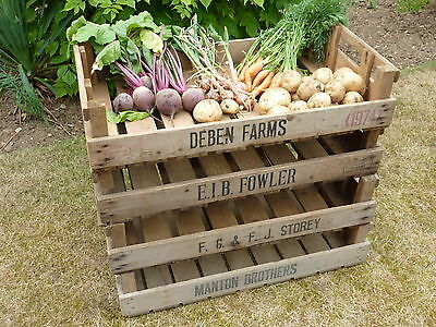 4 Vintage Antique Rustic Wood Farm Tray Apple Crate Potato Chitting Bushel Box/,