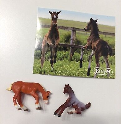 breyer mini whinnies series 1 & 2 foals lot blaze? hero?