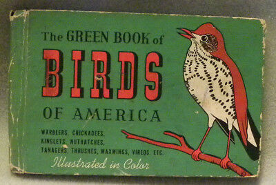1941 Antique The Green Book of Birds of America Color Illustrated Ashbrook,HC