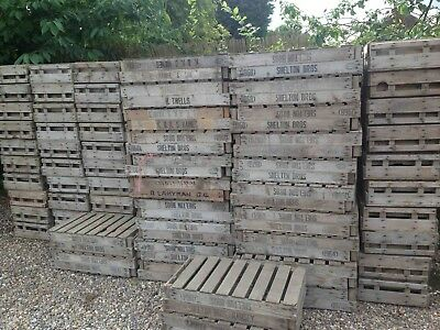 Vintage Fruit Crates Potato Chitting Trays