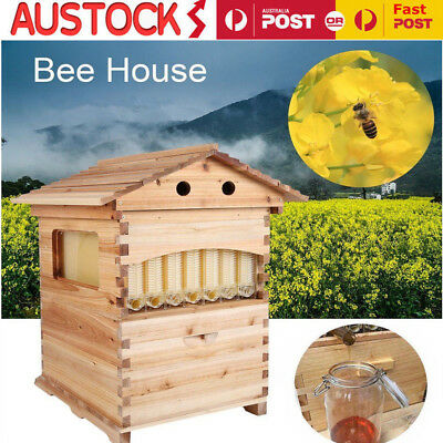 New Wooden Beekeeping Brood Beehive House Box +7PCS Auto Flow Honey Hive Frames