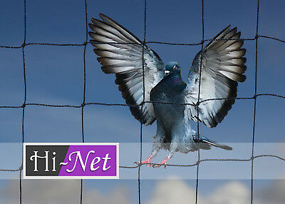 Bird Net Doves Cats Chickens Poultry Pond Pigeon   2m x 25m 50mm mesh Offcut
