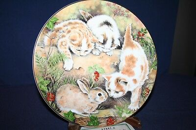 Bunny Chase 4th Cat Plate Kitten Encounters Royal Worcester Bone China