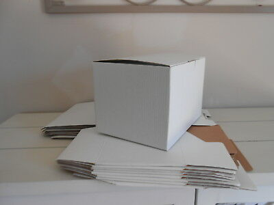 Cardboard Boxes With Lid Attached - White X 7