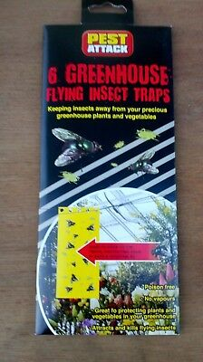 6 Greenhouse flying insect traps yellow sticky card as used by professionals