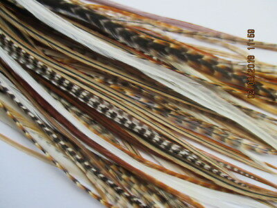 Hair Feathers 10 mixed natural real Feather Hair Extensions 5-11""