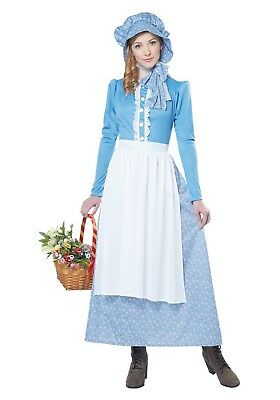 Pioneer Woman Little House On The Prairie Costume