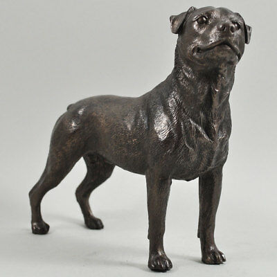 Rottweiler Dog Figure In Cold Cast Bronze By Beauchamp Bronze (34068)