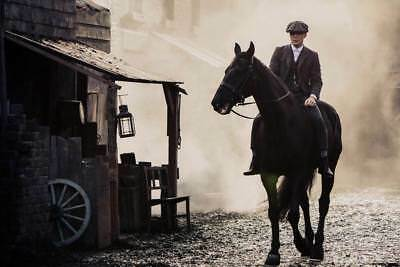 """16256  Hot Movie TV Shows - Peaky Blinders 8 36""""x24"""" Poster"""