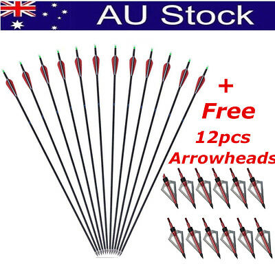 12 pcs/set 31'' FiberGlass Carbon Arrows Archery Hunting Compound Recurve Bow AU