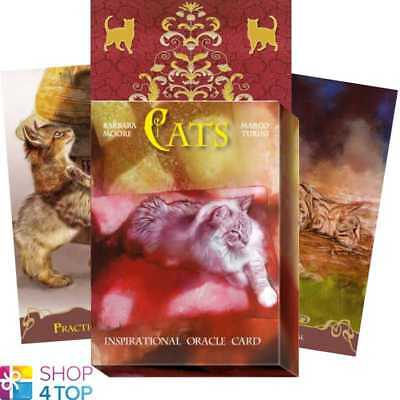 Cats Inspirational Cards Deck Marco Turini Esoteric Telling Lo Scarabeo New