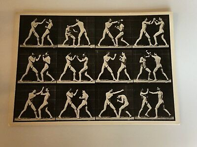 Postcard Of Two Near Nude Men Boxing