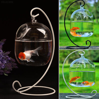 CEA3 Hanging Transparent Glass Vases Fishbowl Fish Tanks Aquarium Decoration