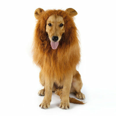 Pet Warmly Hat for Dog Cat Festival Clothes Costume Lion Mane Wig Head with ear#