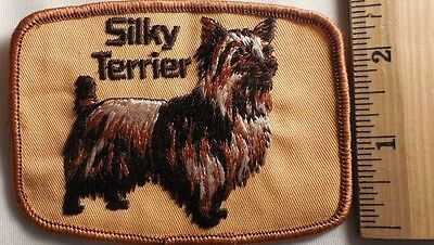 Silky Terrier Patch (Dog, Puppy)
