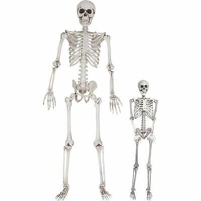 3/5.6ft Skeleton Halloween Posable Full Life Size Party House Hunted Prop Decor