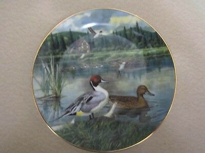 """""""THE PINTAIL"""" Duck Decorative Plate by BART JERNER 1986 Living with Nature 9757G"""