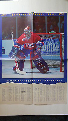 """Patrick Roy Poster (18""""x24"""") & Official 1993-94 Nhl Schedule On The Reverse Side"""