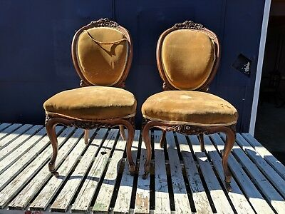 Pair of 19th century continental salon chairs  (SPARES OR REPAIR)