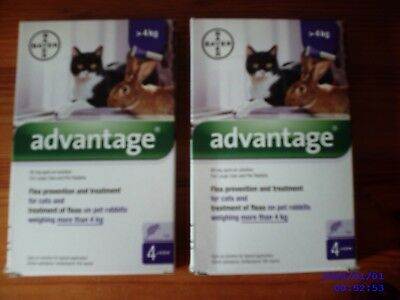 ADVANTAGE Spot On Flea Treatment & Prevention for Cats over 9 lbs - 2 Boxes