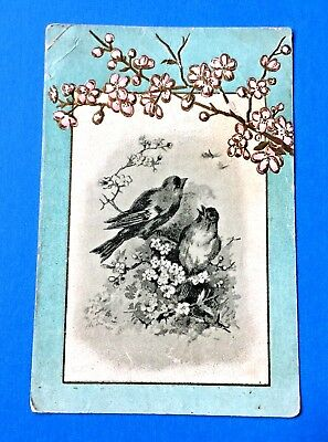 "Lion Coffee ""Two Birds"" Trade Card Woolson Spice Co. Toledo, Ohio"