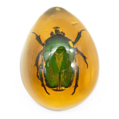 2.17x1.6x0.6'' Green Chafer Insect Stone Resin Amber Pendant Necklace Decoration