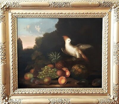 Glorious Early 18Th Century Old Master Oil On Canvas The Crested Cockatiel