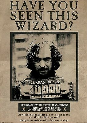 Harry Potter 'have You Seen This Wizard' Wanted Glossy Wall Art Poster Print