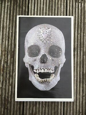 Damien Hirst - The Making Of The Diamomd Skull Book - White Cube