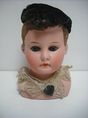 Antique Bisque Boy Shoulderhead With Painted / Flocked Hair & Closed Mouth 8/0