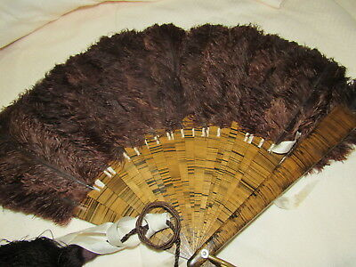 Very rare antique tiger wood staves with ostrich feathers and finger ring