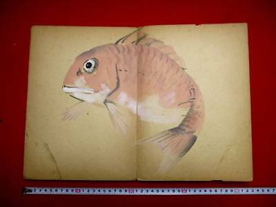 3-40 Japanese Tai original hand drown pictures BOOK