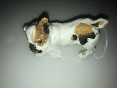 VIntage ROYAL DOULTON JACK RUSSELL DOG FIGURINE, PUPPY with BALL HN1