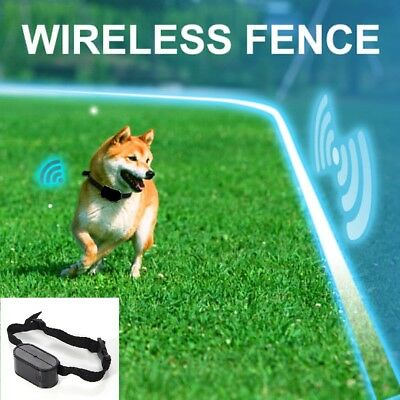 Electric Fence Waterproof Hidden Barrier Boundary Collar Set for 1/2/3 Dogs AU