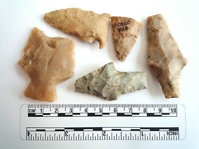 Native American Arrowheads found in Texas x 5, dating from approx 1000BC  (2285)