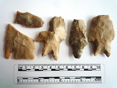 Native American Arrowheads found in Texas x 5, dating from approx 1000BC  (2255)