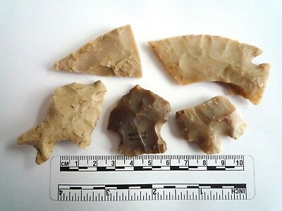 Native American Arrowheads found in Texas x 5, dating from approx 1000BC  (2248)