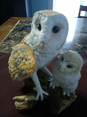 1988 Maruri-Eyes Of The Night Barn Owl-Fine Porcelain-Studio Design 0-8807