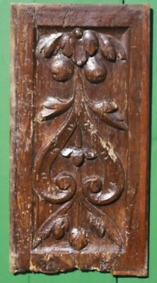 ANTIQUE CARVED OAK PANEL, 16th Century FRENCH RENAISSANCE Medieval Gothic,