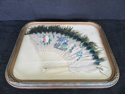 Antique Asian Hand Painted Peacock Feathers Fan & Carved Bone Sticks (Framed)