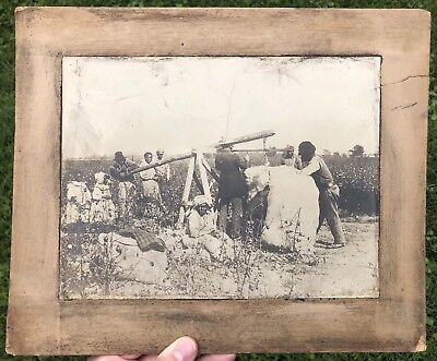 Original 1890 African American Cotton Pickers Cabinet Card Photograph Labor RARE