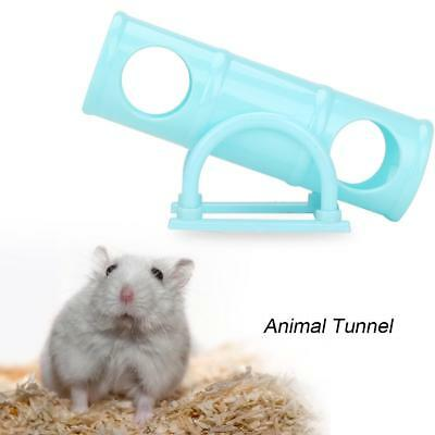 Plastic Rabbit Hamster Seesaw Gerbil Rat Mouse Toy Small Animal Ferret Rat Mice