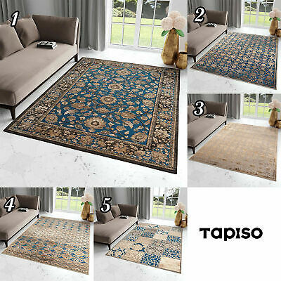 Classical Blue Rug Vintage Style Soft Touch Oriental Design Traditional Carpet