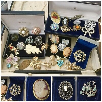 Large Job Lot Antique Vintage Jewellery Brooches Signed Sphinx, Exquisite x30