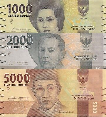 Indonesia 3 Note Set: 1000 to 5000 Rupiah (2016) - all pNew UNC